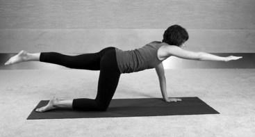 Résultats de recherche d'images pour «lumbar stabilization exercises»