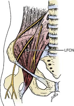 Lower Extremity: Lateral Femoral Cutaneous Nerve Block ...