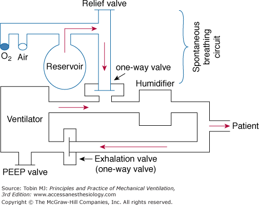 Intermittent Mandatory Ventilation Anesthesia Key