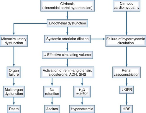 pathophysiology of ascites (ascites-1), but for the confirmation of ascites, it is required that at least 1500 ml of fluid should be present in peritoneal cavity and also detectable by clinical examination but.