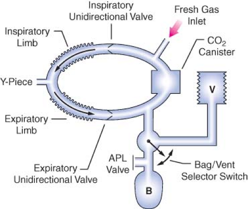 The anesthesia workstation and delivery systems for inhaled components of the circle breathing system b reservoir bag v ventilator apl adjustable pressure limiting pop off valve ccuart Images