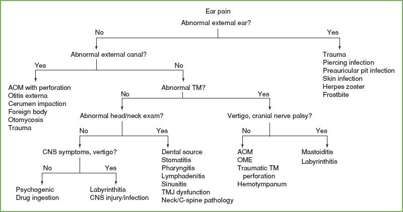 Pain: Earache | Anesthesia Key